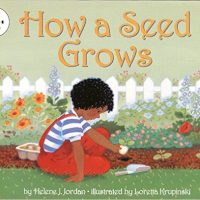 How a Seed Grows ~ Helene J. Jordan